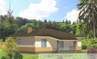 Загородный одноэтажный дом с тремя спальнями