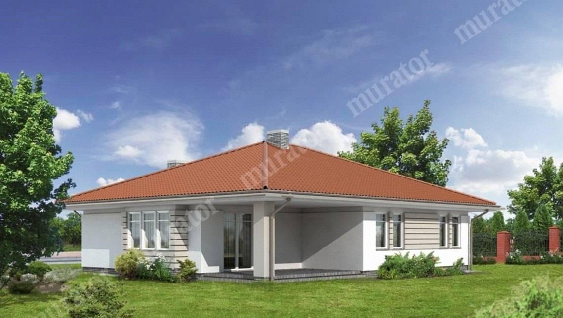 Проект одноэтажного дома на 2 машины
