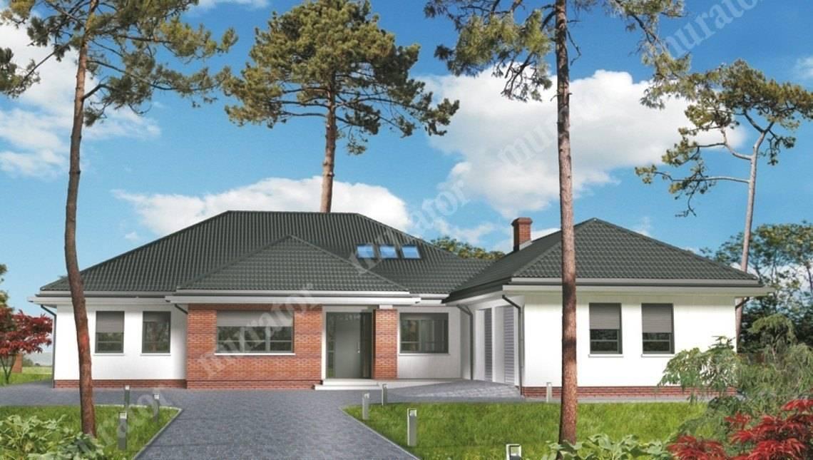Проект просторного дома на 5 спален