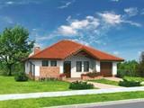 Проект просторного дома с кирпичным орнаментом
