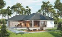 Проект одноэтажного дома в натуральной расцветке