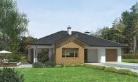 Проект интересного дома натуральной направленности