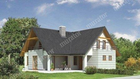 Проект красивого жилого дома с большой гостиной