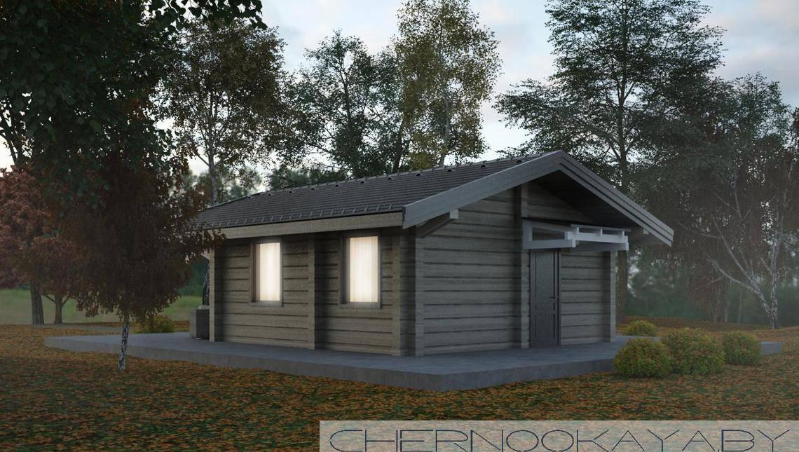 Проект дома для сезонного проживания общей площадью 40 кв. м с просторной террасой