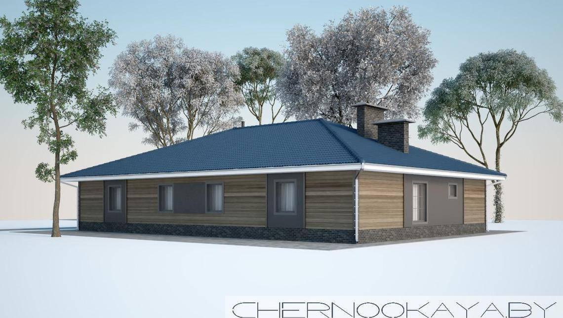 Необычный проект одноэтажного дома с просторной террасой