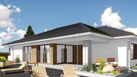 Проект одноэтажного дома с просторной гостиной