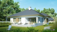 Одноэтажный дом, украшенный серым декором