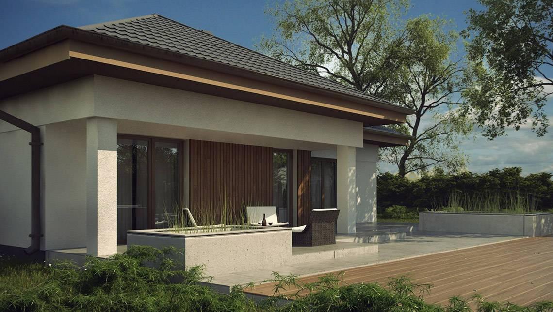 Проект стильного оригинального практичного 1 этажного дома